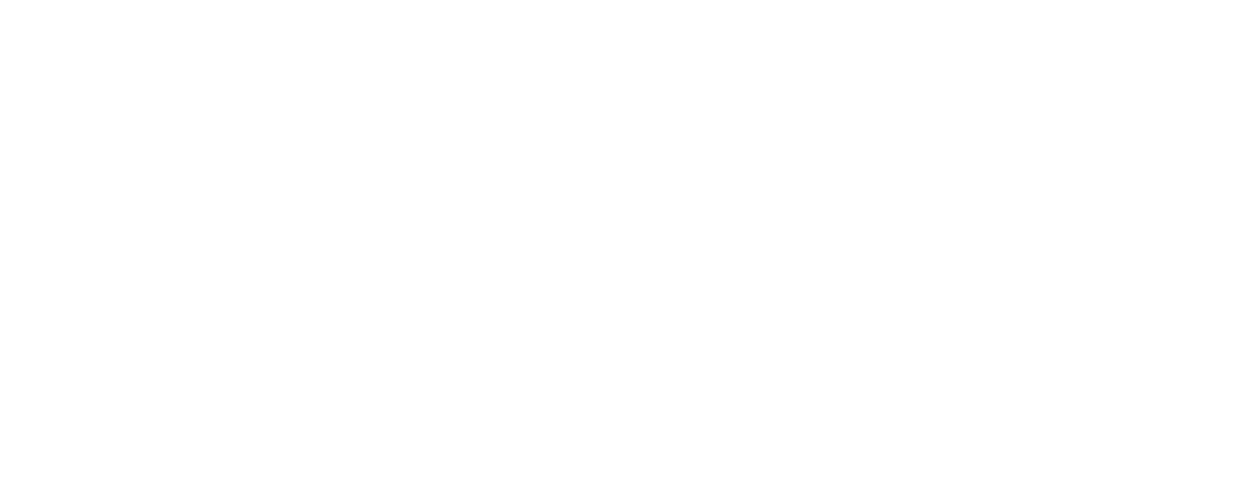 Platinum Cating プラチナコーティング